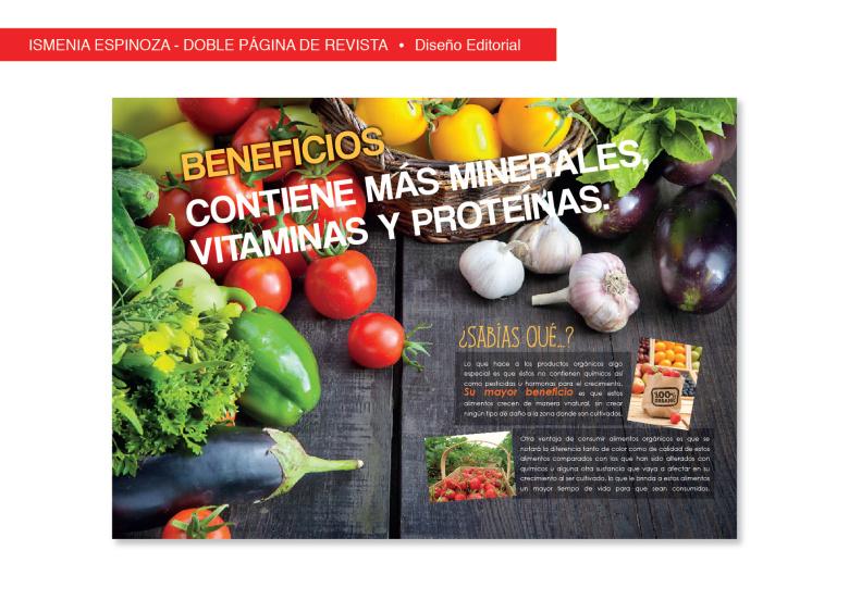 ismenia-espinoza-doble-pagina-blog-editorial